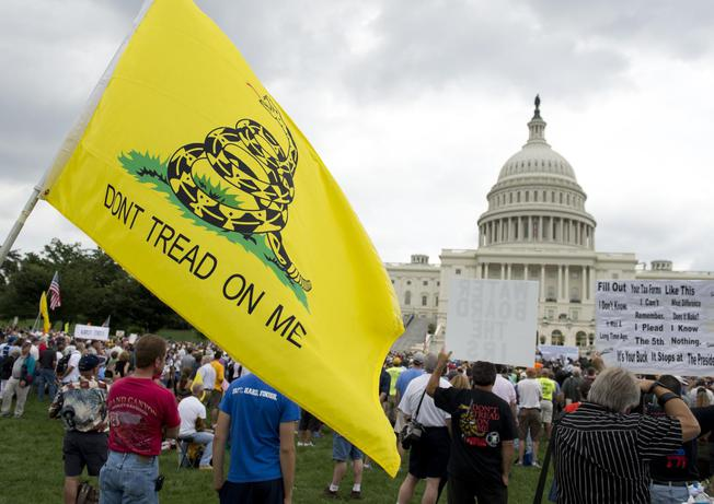 Demonstrators with the Tea Party protest the Internal Revenue Service targeting of the Tea Party and similar groups during a rally outside the Capitol in Washington, DC, on June 19, 2013.